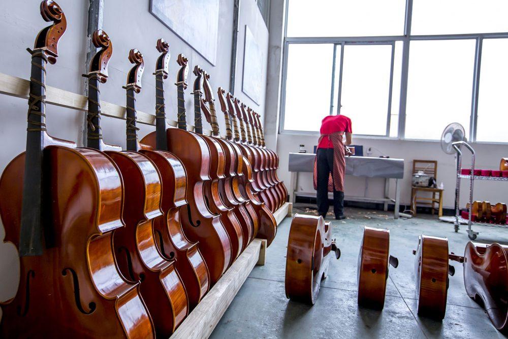 大提琴老师