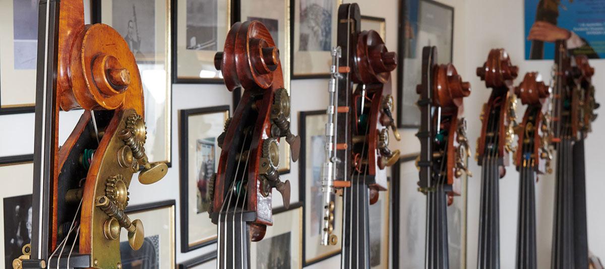 关于提琴知识的学习